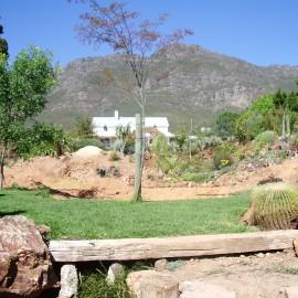 Organic Pond