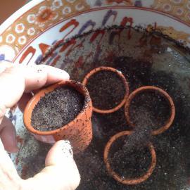 5cm pots