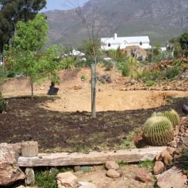Organic Pond Before