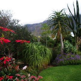 Stoneage Garden