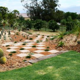 The Dry Garden, Using stone,  pavers and plants for walkway.
