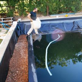 Turning the Pool into and Organic  Swimming Pond. Filling up the Regeneration Zone with stone.